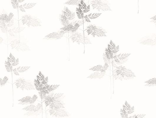 Флизелиновые обои из Швеции коллекция Northern FEELINGS от Collection For Walls. Нежный растительный рисунок темно-серого цвета под названием Meadow на белом фоне. Обои для спальни, обои для кухни. Бесплатная доставка, купить обои, большой ассортимент, Northern FEELINGS, Архив, Обои для гостиной, Обои для кухни, Обои для спальни, Флизелиновые обои