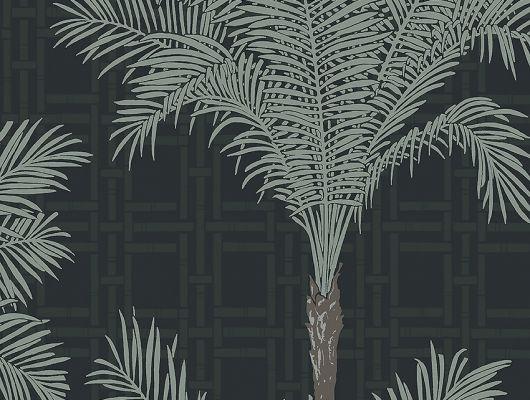 Флизелиновые обои из Швеции коллекция The Apartment от Borastapeter, с рисунком под названием Copacabana крупный растительный рисунок серебряного цвета на черном фоне. Обои для гостиной, для спальни, для кабинета. Купить обои в интернет-магазине, онлайн оплата, бесплатная доставка, The Apartment, Обои для гостиной, Обои для кабинета, Обои для спальни