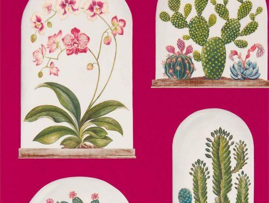 Купить обои для спальни c кактусами на ярко розовом фоне, арт. 216657 из коллекции The Glasshouse от производителя Sanderson недорого, The Glasshouse, Обои для гостиной, Обои для кабинета, Обои для кухни, Обои для спальни, Обои с цветами
