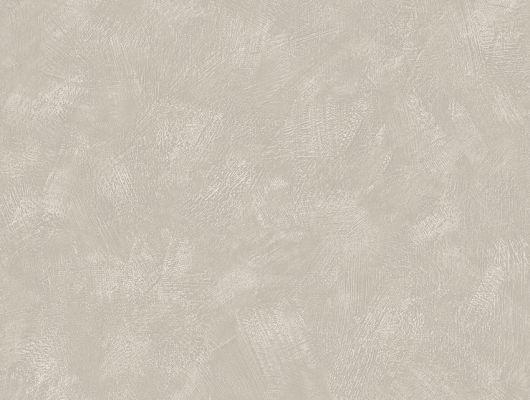 Заказать обои Painter´s Wall, арт. 3586 от Borastapeter с текстурой беленых оштукатуренных стен теплого бежевого цвета в интернет-магазине., Cottage Garden, Обои для кухни, Обои для спальни, Однотонные обои, Флизелиновые обои