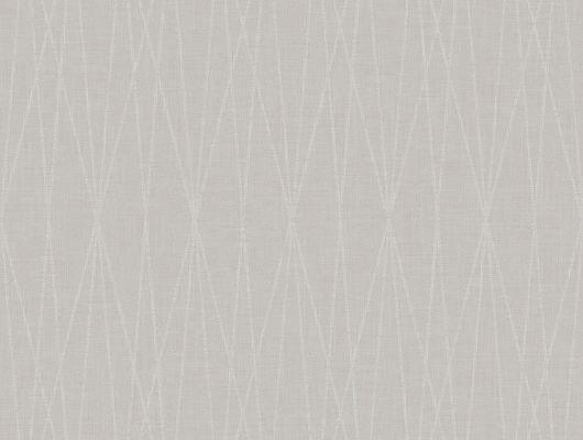 """Шведские обои в прихожую в рулоне арт. 38626  из коллекции """"Borosan EasyUp® 2020"""" от Borastapeter, Швеция с геометрическим рисунком в виде пересекающихся линий белого цвета на сером фоне выбрать в салоне обоев Одизайн в Москве, широкий ассортимент, Borosan EasyUp 2020, Обои для кухни"""