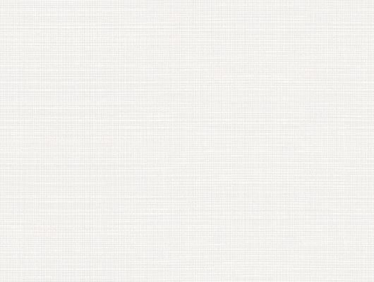%D0%A4%D0%BE%D0%BD%D0%BE%D0%B2%D1%8B%D0%B5+%D0%BE%D0%B1%D0%BE%D0%B8+%D0%B0%D1%80%D1%82.+38632+%D0%B8%D0%B7+%D0%BA%D0%BE%D0%BB%D0%BB%D0%B5%D0%BA%D1%86%D0%B8%D0%B8+%22Borosan+EasyUp%C2%AE+2020%22+%D0%BE%D1%82+Borastapeter+%D1%81+%D1%81%D0%B5%D1%80%D0%BE-%D0%B1%D0%B5%D0%BB%D0%BE%D0%B9+%D1%81%D0%B5%D1%82%D0%BE%D1%87%D0%BA%D0%BE%D0%B9+%D0%B2+%D1%81%D1%82%D0%B8%D0%BB%D0%B5+%D1%80%D0%B5%D1%82%D1%80%D0%BE+%D0%BA%D1%83%D0%BF%D0%B8%D1%82%D1%8C+%D0%B2+%D1%81%D0%B0%D0%BB%D0%BE%D0%BD%D0%B0%D1%85+%D0%9E%D0%94%D0%B8%D0%B7%D0%B0%D0%B9%D0%BD., Borosan EasyUp 2020, Обои для кабинета, Обои для кухни