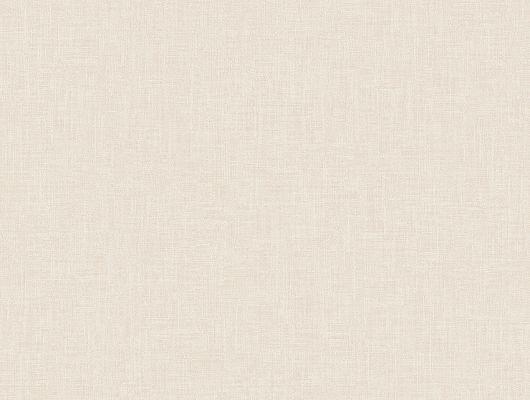 """Однотонные обои арт. 38655 из коллекции  """"Borosan EasyUp® 2020"""" от Borastapeter светло-бежевого цвета с фактурой льняного полотна купить в салонах ОДизайн., Borosan EasyUp 2020, Обои для гостиной, Обои для кухни, Обои для спальни"""