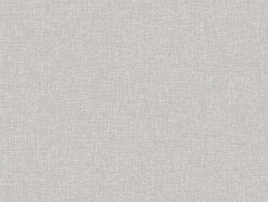 Восхитительные серые обои цвета серебрянной березы в подойдут в любую комнату вашего дома, Crayon, Архив, Обои для квартиры