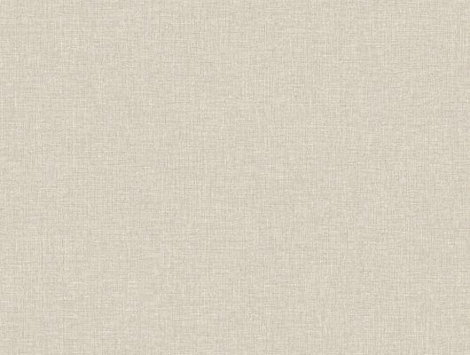 Экологичные обои цвета овсянки с мелом для любителей раннего завтрака и правильного питания., Crayon, Архив, Обои для квартиры