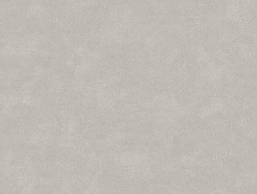 Обои серого цвета с однотонным рисунком купить в Москве, Soft Feeling, Обои для квартиры, Однотонные обои, Распродажа