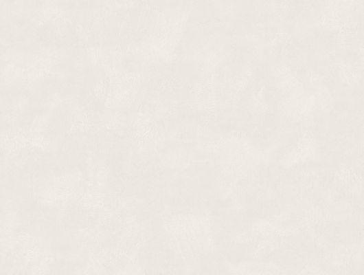 """Флизелиновые однотонные обои, артикул 5050, коллекция Borastapeter """"Chalk"""".Спокойные, приглушенные серовато-белые обои Shades Alabaster зрительно увеличивают пространство. Выбрать, заказать обои в интернет-магазине, большой ассортимент., Chalk, Обои для гостиной, Обои для кухни, Обои для спальни, Однотонные обои"""