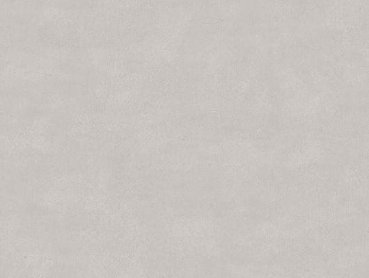 """Дымчато-серые обои Shades Soapstone выглядят очень стильно и утонченно. ,артикул 5052, коллекция Borastapeter """"Chalk"""" ,Швеция.Купить недорого. Бесплатная доставка, Chalk, Обои для кабинета, Обои для спальни, Однотонные обои"""