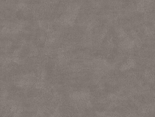 """Флизелиновые обои ,артикул 5053, коллекция Borastapeter """"Chalk"""" ,Швеция с имитацией штукатурки. Темно серого цвета. Заказать в Москве с доставкой, Chalk, Обои для гостиной, Обои для кабинета, Обои для спальни, Однотонные обои"""