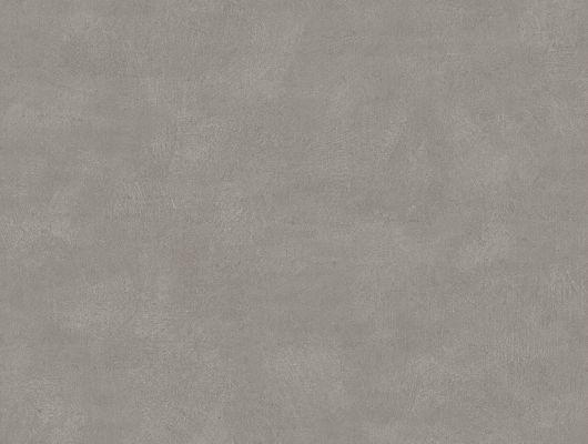 """Флизелиновые обои ,артикул 5054, коллекция Borastapeter """"Chalk"""" ,Швеция . Насыщенного серого оттенка. Заказать в Москве с доставкой.Большой ассортимент., Chalk, Обои для гостиной, Обои для спальни, Однотонные обои"""