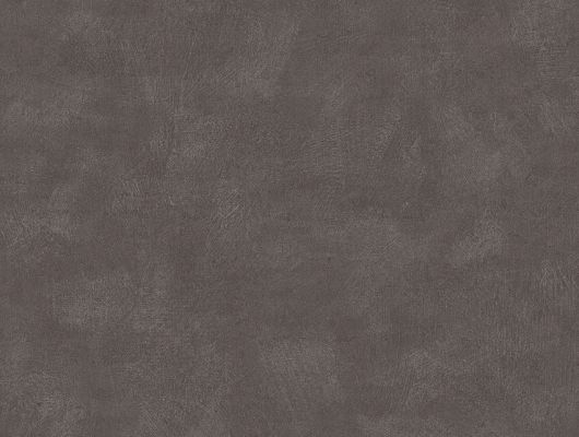 """Купить шведские обои,артикул 5066, коллекция Borastapeter """"Chalk"""" ,Швеция.Однотонные обои темно серого цвета. Купить в салоне О-Дизайн. Доставка по России., Chalk, Обои для гостиной, Обои для спальни, Однотонные обои"""