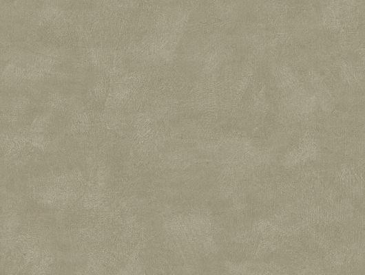 """Купить шведские обои,артикул 5072, коллекция Borastapeter """"Chalk"""" ,Швеция.Однотонные обои нежного зеленого цвета. Заказать в интернет-магазине.Большой ассортимент, Chalk, Обои для гостиной, Обои для спальни, Однотонные обои"""