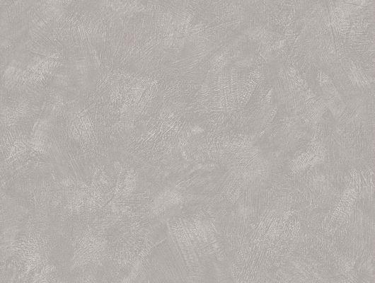 """Купить шведские обои,артикул 5086, коллекция Borastapeter """"Chalk"""" ,пр-во Швеция.Элегантные серые обои Painter's Wall красиво сочетаются с актуальными современными интерьерами, придавая им утонченную простоту. Купить с доставкой.Недорого.Из наличия., Chalk, Обои для гостиной, Обои для кухни, Обои для спальни, Однотонные обои"""
