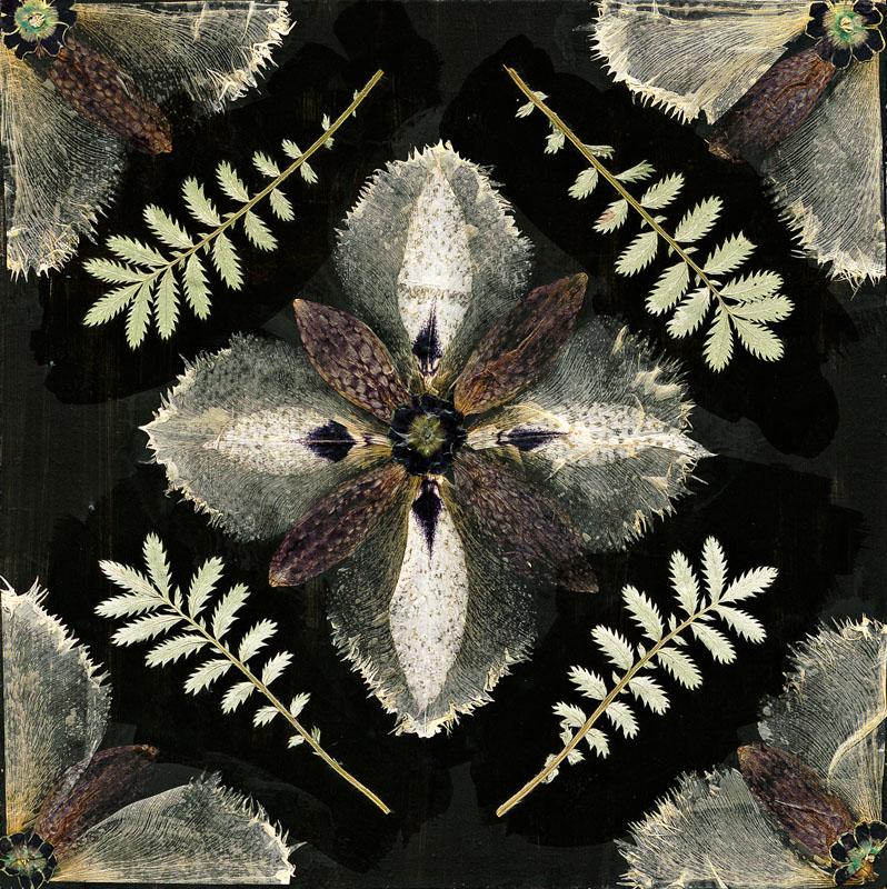 Гербарий на ковре в черно бежевых тонах от студии Kasthall