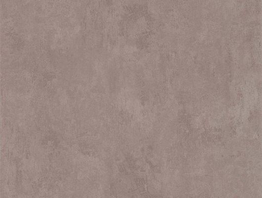 """Обои AURA """"Les Aventures"""", арт. 51137018 - матовые, кофейного цвета обои с текстурой имитирующей штукатурку. Отлично подходят в качестве компаньонов и фоновых обоев. Обои для ремонта, обои для комнаты, красивые обои., Les Aventures"""