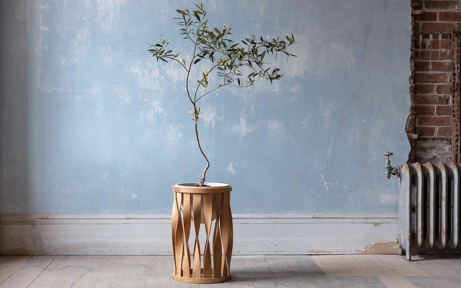 wood-frills-06