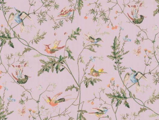 Обои art 62/1003 Бумага Cole & Son Великобритания, Collection of flowers, Английские обои, Архив, Бумажные обои, Обои для спальни, Флизелиновые обои