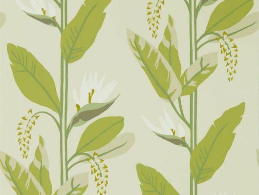 Выбрать обои в современном стиле Llenya, арт. 112238 из коллекции Mirador, Harlequin с крупным растительным рисунком в оттенках зеленого и оливкового в интернет-магазине., Mirador, Обои для гостиной, Обои для кухни