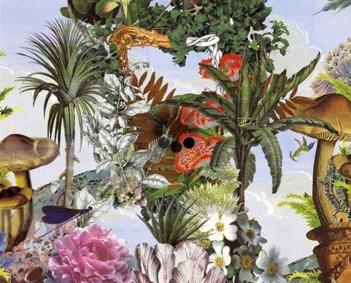 Найти флизелиновое фотопанно PCL7022/01 от Christian Lacroix 2- это Цветущий фантастический сад, выполненный в увеличенном масштабе., Histoires Naturelles, Обои для гостиной, Обои с цветами, Фотообои