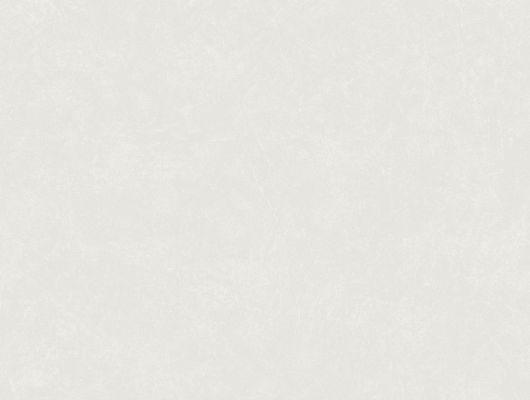 Однотонные серые обои с бесплатной доставкой, Decorama Easy Up 2016, Архив, Обои для квартиры, Однотонные обои, Распродажа
