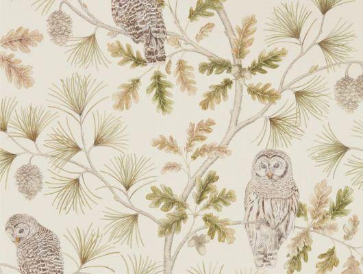 Посмотреть и купить флизелиновые обои для спальни подростка Owlswick из коллекции Elysian от Sanderson арт. 216597 с рисунком сов на соснах в шоу-руме в Москве, Elysian, Обои для гостиной