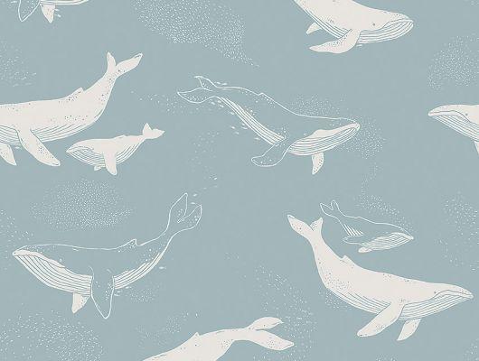 Обои  из Швеции коллекция Newbie, с рисунком под названием  Whales в светло-голубых тонах  на которых детально прорисованы киты , идеально подойдут для спален детей. Шведские обои купить, салон обоев ОДизайн, в интернет-магазине, бесплатная доставка, оплата онлайн, большой ассортимент, Newbie Wallpaper, Детские обои, Дизайнерские обои, Новинки