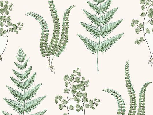 Обои из Швеции коллекция Falsterbo lll от Borastapeter. Рисунок под названием Herba.Растительный рисунок в зеленых оттенках на светлом фоне. Обои для спальни, для кухни, для гостиной. Купить обои,  интернет-магазин, онлайн оплата, бесплатная доставка, большой ассортимент, Falsterbo III, Обои для гостиной, Обои для кухни, Обои для спальни, Хиты продаж
