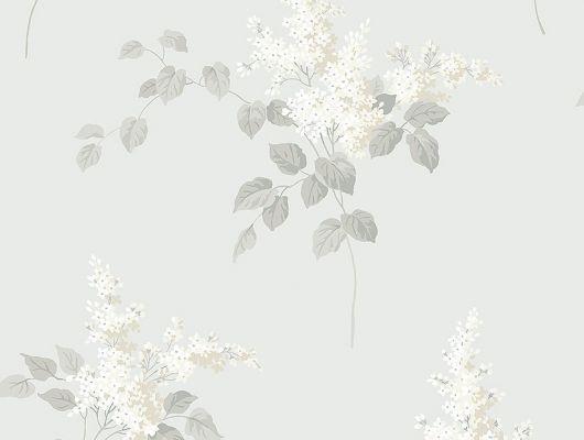 Обои из Швеции коллекция Falsterbo lll от Borastapeter. Рисунок под названием Lilacs – Сирень с белыми цветами на светло-сером фоне. Обои для кухни, для спальни. Купить, заказать обои в интернет-магазине, онлайн оплата, бесплатная доставка., Falsterbo III, Обои для гостиной, Обои для кухни, Обои для спальни
