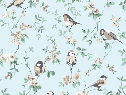 Обои из Швеции коллекция Falsterbo lll от Borastapeter. Птички на зеленых ветках с цветочками на голубом фоне. Обои для детской, для гостиной, для спальни.  Интернет-магазин, онлайн оплата, большой выбор, Falsterbo III, Детские обои, Обои для гостиной, Обои для спальни, Хиты продаж