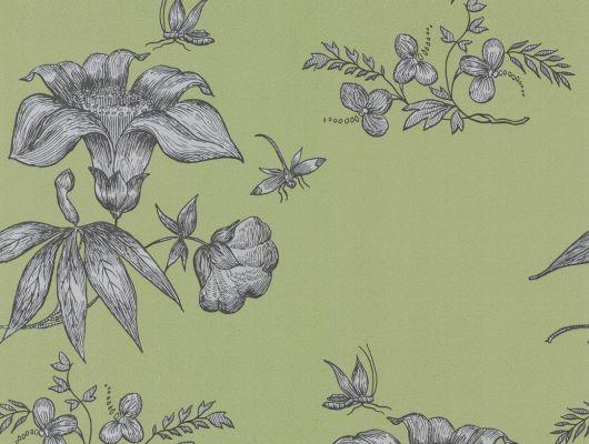 Обои art 77/8028 Флизелин Cole & Son Великобритания, Fornasetti, Английские обои, Архив, Обои для прихожей, Распродажа