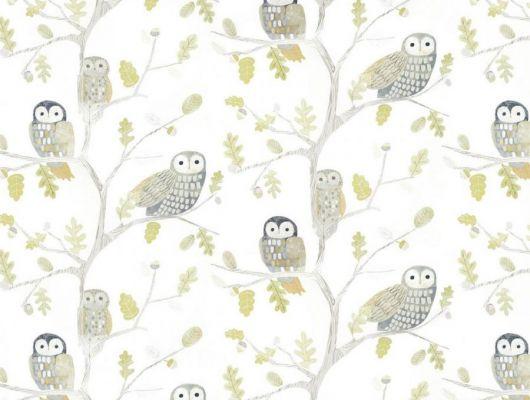 Заказать обои для детской Little Owls 112627 от Harlequin с изображением очаровательных сов, сидящих на дубовых ветках в мягких оттенках зеленого, серого и охры в интернет-магазине., Book of Little Treasures