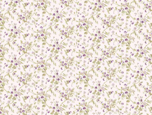 Обои art 81/11047 Флизелин Cole & Son Великобритания, Collection of flowers, Английские обои, Архив, Обои для спальни, Распродажа, Флизелиновые обои