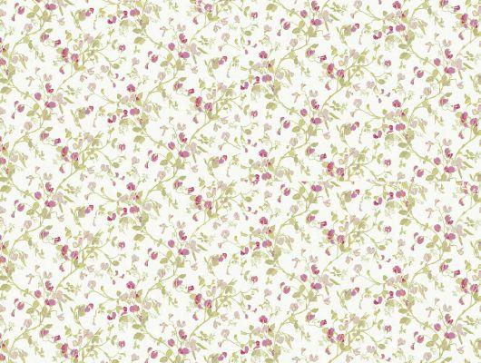 Обои art 81/11048 Флизелин Cole & Son Великобритания, Collection of flowers, Английские обои, Архив, Обои для спальни, Обои с цветами, Распродажа, Флизелиновые обои