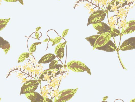 Обои art 81/6023 Флизелин Cole & Son Великобритания, Collection of flowers, Английские обои, Архив, Обои для гостиной, Распродажа, Флизелиновые обои