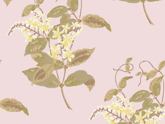 Обои art 81/6025 Флизелин Cole & Son Великобритания, Collection of flowers, Английские обои, Архив, Обои для гостиной, Распродажа, Флизелиновые обои