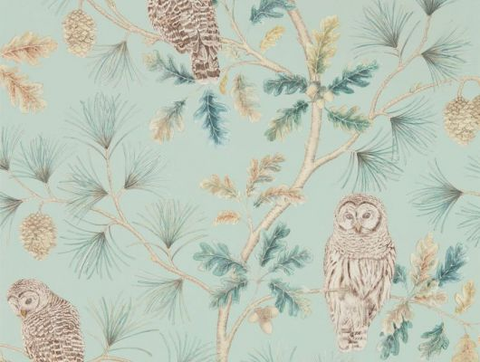 Подобрать  сказочные флизелиновые обои для ремонта кухни Owlswick из коллекции Elysian от Sanderson арт. 216596 с растительным рисунком деревьев и сов на сайте odesign.ru, Elysian, Обои для гостиной, Обои для кухни