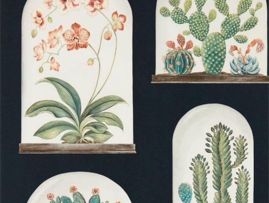 Выбрать дизайнерские обои для спальни с цветами на черном фоне Terrariums  из коллекции The Glasshouse от производителя Sanderson с интернет-магазине odesign.ru, The Glasshouse, Обои для гостиной, Обои для спальни, Обои с цветами