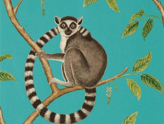 Купить флизелиновые обои для гостиной Ringtailed Lemur с лемурами я ярком бирюзовом фоне из коллекции The Glasshouse от производителя Sanderson в интернет-магазине с доставкой, The Glasshouse, Обои для гостиной, Обои для кухни, Обои для спальни