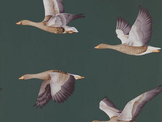 Флизелиновые обои для гостиной Geese из коллекции Elysian от Sanderson арт.216608 с рисунком птиц на зеленом фоне можно выбрать на сайте odesign.ru, Elysian, Обои для гостиной, Обои для спальни