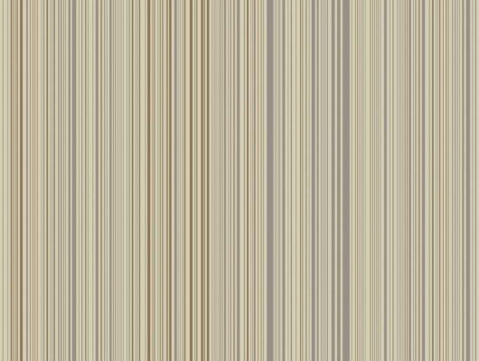 Обои art 96/6034 Флизелин Cole & Son Великобритания, Festival Stripes, Английские обои, Архив, Распродажа