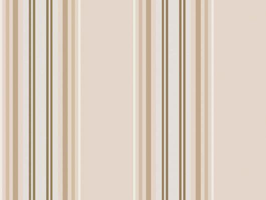Обои art 96/8044 Флизелин Cole & Son Великобритания, Festival Stripes, Английские обои, Архив, Обои для гостиной, Распродажа