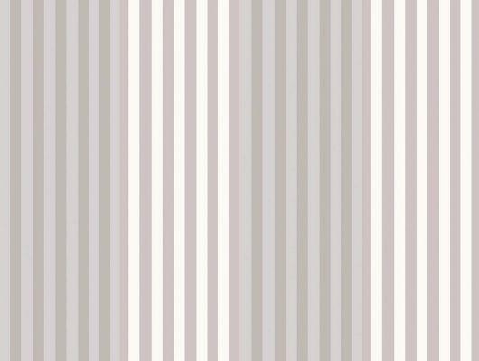 Обои art 96/9048 Флизелин Cole & Son Великобритания, Festival Stripes, Английские обои, Архив, Обои для гостиной, Распродажа