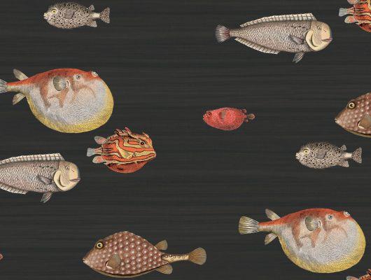 Обои английского производства с изображением десятка разноцветных рыб на темном, чернильном фоне для украшения акцентной стены в интерьере, Fornasetti, Fornasetti II, Fornasetti Senza Tempo, Английские обои, Детские обои