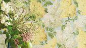 """Обои Cole & Son - """"Lilac"""" арт. 115/1003- это изображение всеми любимого пышного кустарника сирени лимонного и оливкового цвета на голубом фоне. Обои в Москве, адреса магазинов, каталог обоев"""