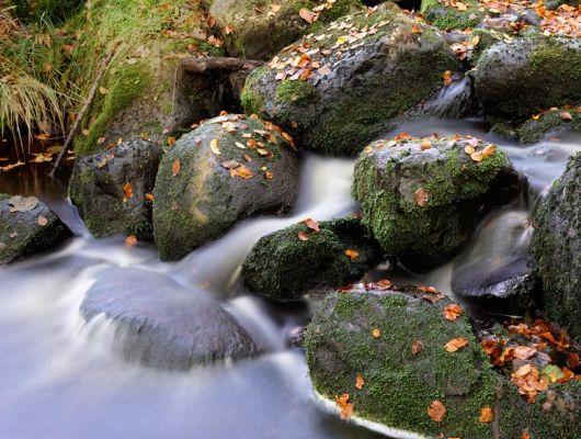Обои art C041001-8 Флизелин Mr Perswall Швеция, Photo Mr P, Индивидуальное панно, Фотообои