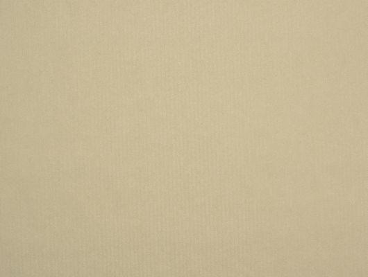 %D0%A4%D0%BB%D0%B8%D0%B7%D0%B5%D0%BB%D0%B8%D0%BD%D0%BE%D0%B2%D1%8B%D0%B5+%D0%BE%D0%B1%D0%BE%D0%B8+%D0%B8%D0%B7+%D0%A8%D0%B2%D0%B5%D1%86%D0%B8%D0%B8+%D0%BA%D0%BE%D0%BB%D0%BB%D0%B5%D0%BA%D1%86%D0%B8%D1%8F+VINYL+%D0%BE%D1%82+Collection+FOR+WALLS+%D0%BF%D0%BE%D0%B4+%D0%BD%D0%B0%D0%B7%D0%B2%D0%B0%D0%BD%D0%B8%D0%B5%D0%BC+Emil.+%D0%9E%D0%B4%D0%BD%D0%BE%D1%82%D0%BE%D0%BD%D0%BD%D1%8B%D0%B5+%D0%BE%D0%B1%D0%BE%D0%B8+%D1%81%D0%B2%D0%B5%D1%82%D0%BB%D0%BE-%D0%B1%D0%B5%D0%B6%D0%B5%D0%B2%D0%BE%D0%B3%D0%BE-%D1%81%D0%B5%D1%80%D0%BE%D0%B3%D0%BE+%D0%BE%D1%82%D1%82%D0%B5%D0%BD%D0%BA%D0%B0+%D1%81+%D0%BC%D0%B5%D0%BB%D0%BA%D0%B8%D0%BC+%D0%B7%D0%B8%D0%B3%D0%B7%D0%B0%D0%B3%D0%BE%D0%BE%D0%B1%D1%80%D0%B0%D0%B7%D0%BD%D1%8B%D0%BC+%D1%80%D0%B8%D1%81%D1%83%D0%BD%D0%BA%D0%BE%D0%BC+%D1%81+%D0%B1%D0%BB%D0%B5%D1%81%D1%82%D1%8F%D1%89%D0%B8%D0%BC+%D1%8D%D1%84%D1%84%D0%B5%D0%BA%D1%82%D0%BE%D0%BC.+%D0%9E%D0%B1%D0%BE%D0%B8+%D0%B4%D0%BB%D1%8F+%D1%81%D0%BF%D0%B0%D0%BB%D1%8C%D0%BD%D0%B8%2C+%D0%BE%D0%B1%D0%BE%D0%B8+%D0%B4%D0%BB%D1%8F+%D0%BA%D1%83%D1%85%D0%BD%D0%B8%2C+%D0%BE%D0%B1%D0%BE%D0%B8+%D0%B4%D0%BB%D1%8F+%D0%B3%D0%BE%D1%81%D1%82%D0%B8%D0%BD%D0%BE%D0%B9%2C+%D0%BE%D0%B1%D0%BE%D0%B8+%D0%B4%D0%BB%D1%8F+%D0%BA%D0%BE%D1%80%D0%B8%D0%B4%D0%BE%D1%80%D0%B0.+%D0%9A%D1%83%D0%BF%D0%B8%D1%82%D1%8C+%D0%BE%D0%B1%D0%BE%D0%B8+%D0%BE%D0%BD%D0%BB%D0%B0%D0%B9%D0%BD%2C+%D0%B1%D0%BE%D0%BB%D1%8C%D1%88%D0%BE%D0%B9+%D0%B0%D1%81%D1%81%D0%BE%D1%80%D1%82%D0%B8%D0%BC%D0%B5%D0%BD%D1%82%2C+%D0%B1%D0%B5%D1%81%D0%BF%D0%BB%D0%B0%D1%82%D0%BD%D0%B0%D1%8F+%D0%B4%D0%BE%D1%81%D1%82%D0%B0%D0%B2%D0%BA%D0%B0, Vinyl CFW, Обои для гостиной, Обои для кабинета, Обои для кухни, Обои для спальни