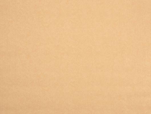 %D0%A4%D0%BB%D0%B8%D0%B7%D0%B5%D0%BB%D0%B8%D0%BD%D0%BE%D0%B2%D1%8B%D0%B5+%D0%BE%D0%B1%D0%BE%D0%B8+%D0%B8%D0%B7+%D0%A8%D0%B2%D0%B5%D1%86%D0%B8%D0%B8+%D0%BA%D0%BE%D0%BB%D0%BB%D0%B5%D0%BA%D1%86%D0%B8%D1%8F+VINYL+%D0%BE%D1%82+Collection+FOR+WALLS+%D0%BF%D0%BE%D0%B4+%D0%BD%D0%B0%D0%B7%D0%B2%D0%B0%D0%BD%D0%B8%D0%B5%D0%BC+Emil.+%D0%9E%D0%B4%D0%BD%D0%BE%D1%82%D0%BE%D0%BD%D0%BD%D1%8B%D0%B5+%D0%BE%D0%B1%D0%BE%D0%B8+%D0%BE%D1%80%D0%B0%D0%BD%D0%B6%D0%B5%D0%B2%D0%BE%D0%B3%D0%BE+%D1%86%D0%B2%D0%B5%D1%82%D0%B0+%D1%81+%D0%BC%D0%B5%D0%BB%D0%BA%D0%B8%D0%BC+%D0%B7%D0%B8%D0%B3%D0%B7%D0%B0%D0%B3%D0%BE%D0%BE%D0%B1%D1%80%D0%B0%D0%B7%D0%BD%D1%8B%D0%BC+%D1%80%D0%B8%D1%81%D1%83%D0%BD%D0%BA%D0%BE%D0%BC+%D1%81+%D0%B1%D0%BB%D0%B5%D1%81%D1%82%D1%8F%D1%89%D0%B8%D0%BC+%D1%8D%D1%84%D1%84%D0%B5%D0%BA%D1%82%D0%BE%D0%BC.+%D0%9E%D0%B1%D0%BE%D0%B8+%D0%B4%D0%BB%D1%8F+%D1%81%D0%BF%D0%B0%D0%BB%D1%8C%D0%BD%D0%B8%2C+%D0%BE%D0%B1%D0%BE%D0%B8+%D0%B4%D0%BB%D1%8F+%D0%BA%D1%83%D1%85%D0%BD%D0%B8%2C+%D0%BE%D0%B1%D0%BE%D0%B8+%D0%B4%D0%BB%D1%8F+%D0%B3%D0%BE%D1%81%D1%82%D0%B8%D0%BD%D0%BE%D0%B9%2C+%D0%BE%D0%B1%D0%BE%D0%B8+%D0%B4%D0%BB%D1%8F+%D0%BA%D0%BE%D1%80%D0%B8%D0%B4%D0%BE%D1%80%D0%B0.+%D0%91%D0%B5%D1%81%D0%BF%D0%BB%D0%B0%D1%82%D0%BD%D0%B0%D1%8F+%D0%B4%D0%BE%D1%81%D1%82%D0%B0%D0%B2%D0%BA%D0%B0%2C+%D0%BA%D1%83%D0%BF%D0%B8%D1%82%D1%8C+%D0%BE%D0%B1%D0%BE%D0%B8%2C+%D0%B1%D0%BE%D0%BB%D1%8C%D1%88%D0%BE%D0%B9+%D0%B0%D1%81%D1%81%D0%BE%D1%80%D1%82%D0%B8%D0%BC%D0%B5%D0%BD%D1%82, Vinyl CFW, Обои для гостиной, Обои для кухни, Обои для спальни