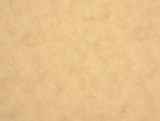 %D0%A4%D0%BB%D0%B8%D0%B7%D0%B5%D0%BB%D0%B8%D0%BD%D0%BE%D0%B2%D1%8B%D0%B5+%D0%BE%D0%B1%D0%BE%D0%B8+%D0%B8%D0%B7+%D0%A8%D0%B2%D0%B5%D1%86%D0%B8%D0%B8+%D0%BA%D0%BE%D0%BB%D0%BB%D0%B5%D0%BA%D1%86%D0%B8%D1%8F+VINYL+%D0%BE%D1%82+Collection+FOR+WALLS+%D0%BF%D0%BE%D0%B4+%D0%BD%D0%B0%D0%B7%D0%B2%D0%B0%D0%BD%D0%B8%D0%B5%D0%BC+Maja.+%D0%9E%D0%B4%D0%BD%D0%BE%D1%82%D0%BE%D0%BD%D0%BD%D1%8B%D0%B5+%D0%BE%D0%B1%D0%BE%D0%B8+%D1%81%D0%B2%D0%B5%D1%82%D0%BB%D0%BE-%D0%BE%D1%80%D0%B0%D0%BD%D0%B6%D0%B5%D0%B2%D0%BE%D0%B3%D0%BE+%D0%BE%D1%82%D1%82%D0%B5%D0%BD%D0%BA%D0%B0+%D1%81+%D0%B4%D1%8B%D0%BC%D1%87%D0%B0%D1%82%D1%8B%D0%BC+%D1%80%D0%B8%D1%81%D1%83%D0%BD%D0%BA%D0%BE%D0%BC.+%D0%9E%D0%B1%D0%BE%D0%B8+%D0%B4%D0%BB%D1%8F+%D1%81%D0%BF%D0%B0%D0%BB%D1%8C%D0%BD%D0%B8%2C+%D0%BE%D0%B1%D0%BE%D0%B8+%D0%B4%D0%BB%D1%8F+%D0%B3%D0%BE%D1%81%D1%82%D0%B8%D0%BD%D0%BE%D0%B9%2C+%D0%BE%D0%B1%D0%BE%D0%B8+%D0%B4%D0%BB%D1%8F+%D0%BA%D0%BE%D1%80%D0%B8%D0%B4%D0%BE%D1%80%D0%B0.+%D0%9E%D0%BD%D0%BB%D0%B0%D0%B9%D0%BD+%D0%BE%D0%BF%D0%BB%D0%B0%D1%82%D0%B0%2C+%D0%B1%D0%BE%D0%BB%D1%8C%D1%88%D0%BE%D0%B9+%D0%B0%D1%81%D1%81%D0%BE%D1%80%D1%82%D0%B8%D0%BC%D0%B5%D0%BD%D1%82%2C+%D1%81%D0%B0%D0%BC%D0%BE%D0%B2%D1%8B%D0%B2%D0%BE%D0%B7%2C+%D0%B1%D0%B5%D1%81%D0%BF%D0%BB%D0%B0%D1%82%D0%BD%D0%B0%D1%8F+%D0%B4%D0%BE%D1%81%D1%82%D0%B0%D0%B2%D0%BA%D0%B0, Vinyl CFW, Обои для гостиной, Обои для кабинета, Обои для кухни, Обои для спальни