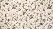 Cole_and_Son_The_Contemporary_Collection_Fabrics_Hummingbirds_F62-1001_Full_Width