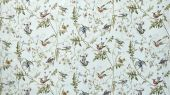 Cole_and_Son_The_Contemporary_Collection_Fabrics_Hummingbirds_F62-1004_Full_Width